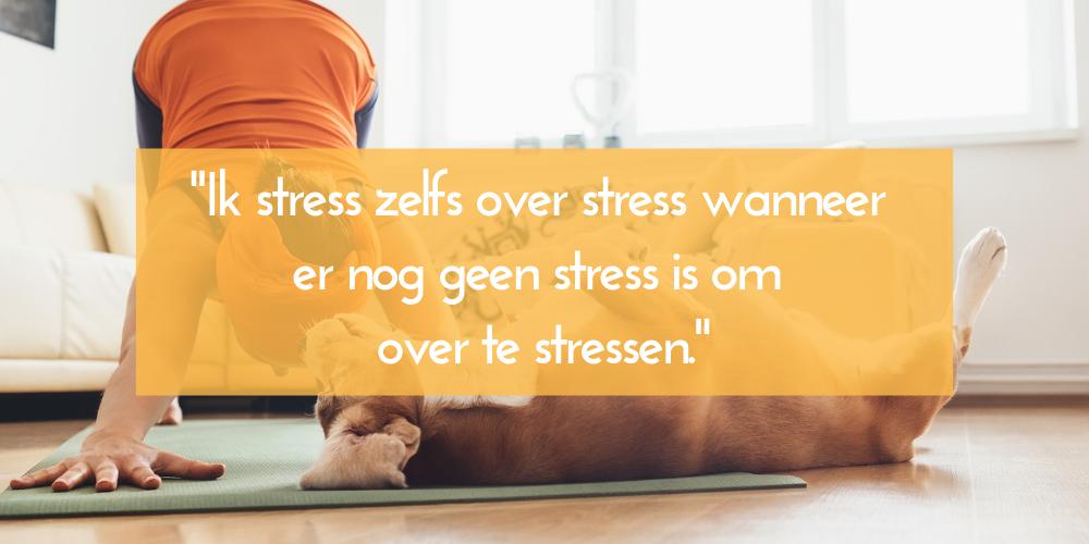stressen over stress workshop